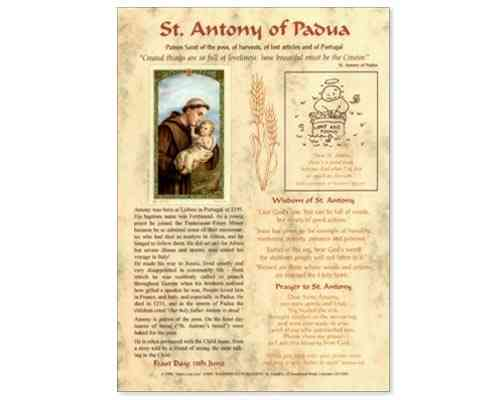 St Anthony of Padua Laminate