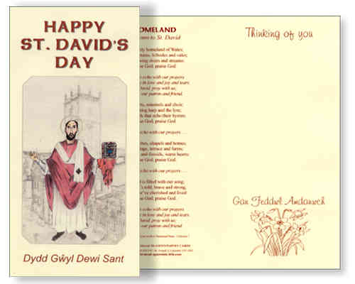 St David's Day Card